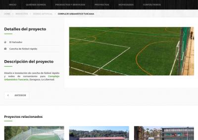 tecdesa.com | Página detalle de proyectos
