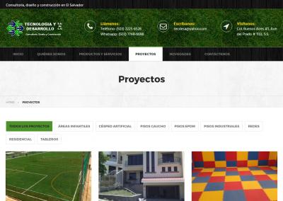 tecdesa.com | Página de proyectos